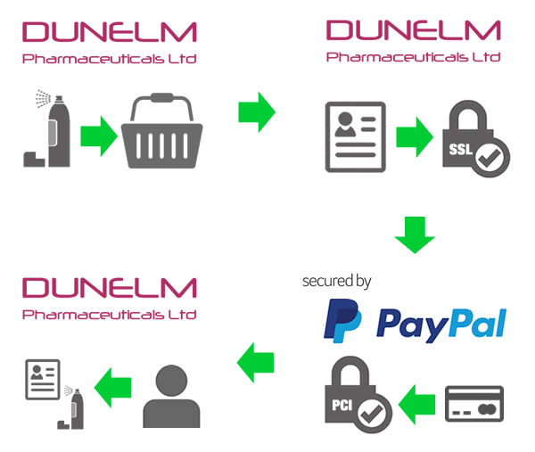 PayPal Process Diagram